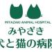 みやざき犬と猫の病院